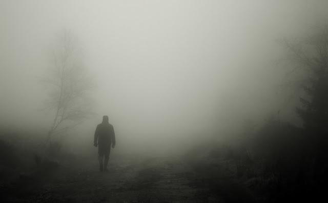 Jadeos en la niebla